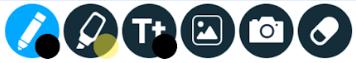 Nearpod Camera Icon